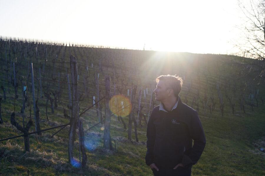 Weingut Polz: Neue Strategie mit Eigentümerwechsel