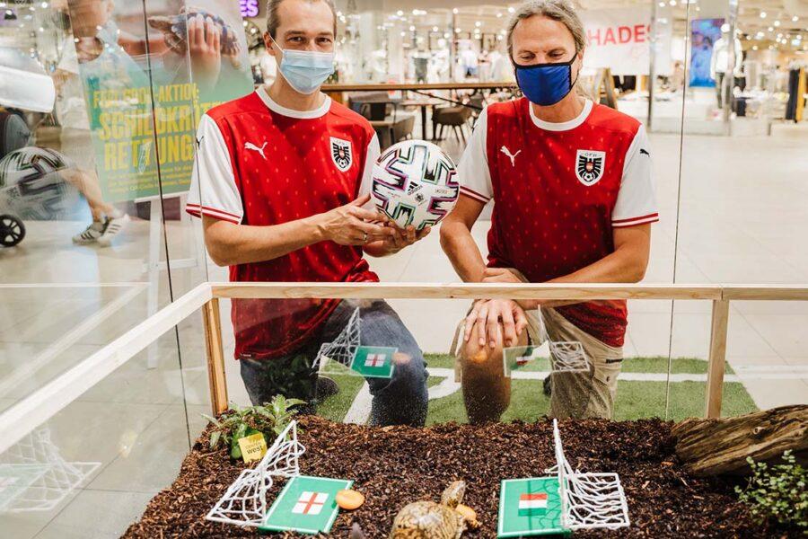 EM-Orakel im Center West: Schildkröte Sigmund tippt auf Italien als Europameister